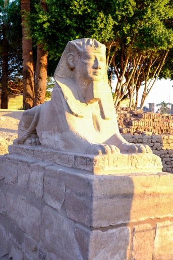 Another well-preserved sphinx.