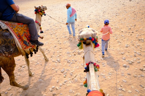 My guide threw a tantrum after they told him he couldn't lead the camel.